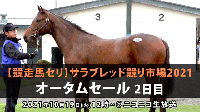 【競走馬セリ】サラブレッド競り市場2021「オータムセール」 2日目